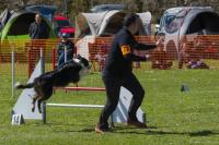 GPF AGILITY AVRIL 2016 (photographes)
