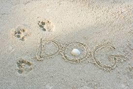 Empreinte sable